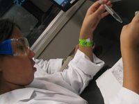 Nantwich genetics firm creates rapid COVID-19 antibody test