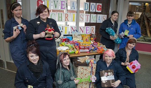Nantwich students give homeless dogs Christmas lifeline