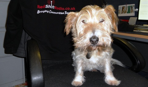 Redshift Radio launches pet mascot competition