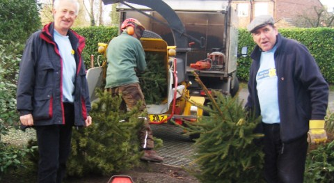 Nantwich tree shredding raises Marie Curie Cancer Care money