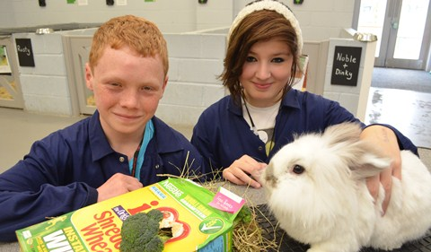Reaseheath College and local schools team up for rabbit project
