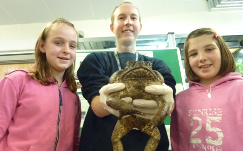 Reaseheath College joins Amphibian Ark to help endangered animals