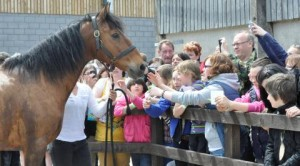 'Joey' meets the public - reaseheath college