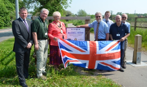 New Bluebell woods along Crewe-Nantwich Greenway are unveiled