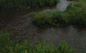 Wistaston Brook flooding