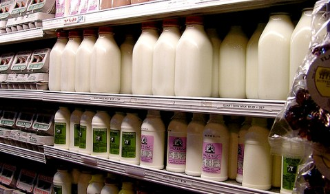 Nantwich dairy farmers join the growing milk price protest