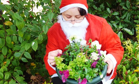 St Luke's Hospice Cheshire Santa fortnight