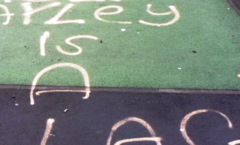 Police hunt yobs after Wistaston playground vandalised