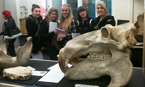 Liverpool Museum - Tiffany Walker, Becky Green, Alice See, Charise Erskine, Lucy Moses