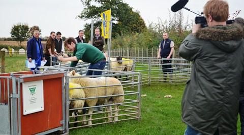 "New ""Farmer's Apprentice"" TV show set in Nantwich"