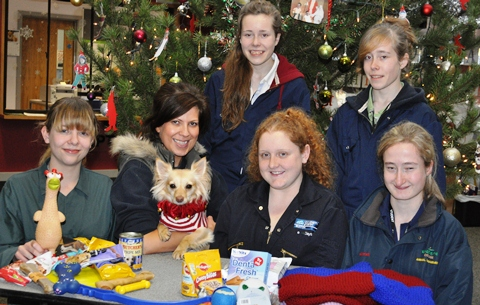 Nantwich students help homeless dogs with Christmas fundraiser