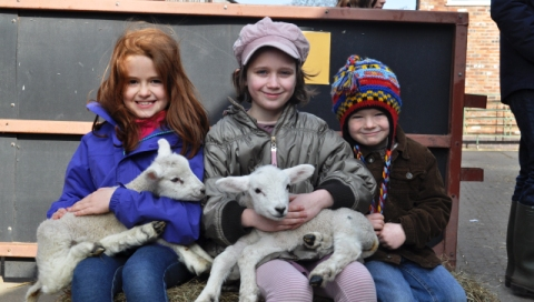 Families enjoy Reaseheath College lambing event in Nantwich