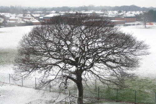 South Cheshire Winter weather