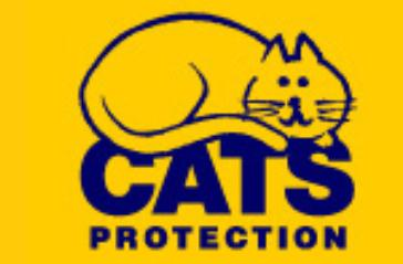 Cats Protection League to stage Wistaston memorial hall fundraiser