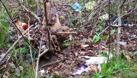 "Nantwich Litter Group targets ""grotspot"" woodland sites"