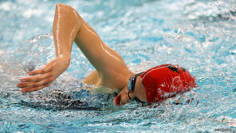 Nantwich Seals youngsters make step up to Arena Swimming League