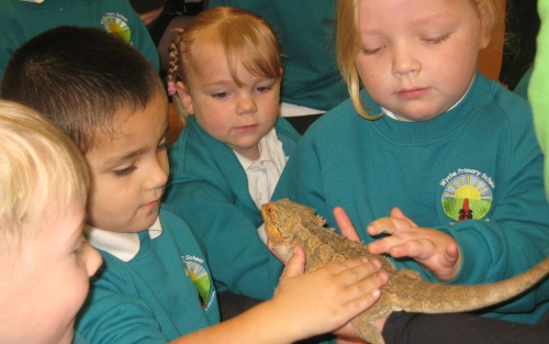 Nantwich youngsters enjoy Zoo2U visit to classroom