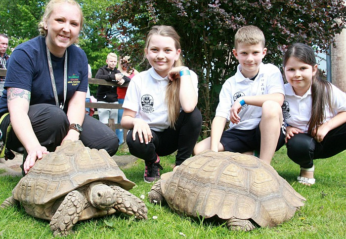 9. Lily, 10, Ollie, 8 and Daisy, 5, Ball meet our tortoises at Reaseheath Zoo