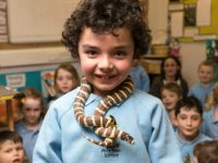 Nantwich pupils face fears as class invaded by exotic animals