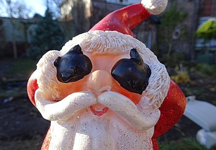 A shy Father Christmas gnome