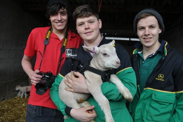 Alex Lyth, James Warren and Michael Halford with lamb cam