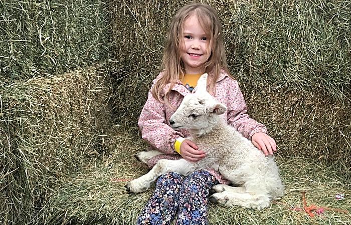 Amelia Manley, 4 yrs, Winsford (1)