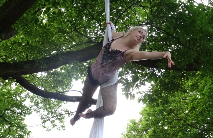 An aerialist - The Lost Carnival