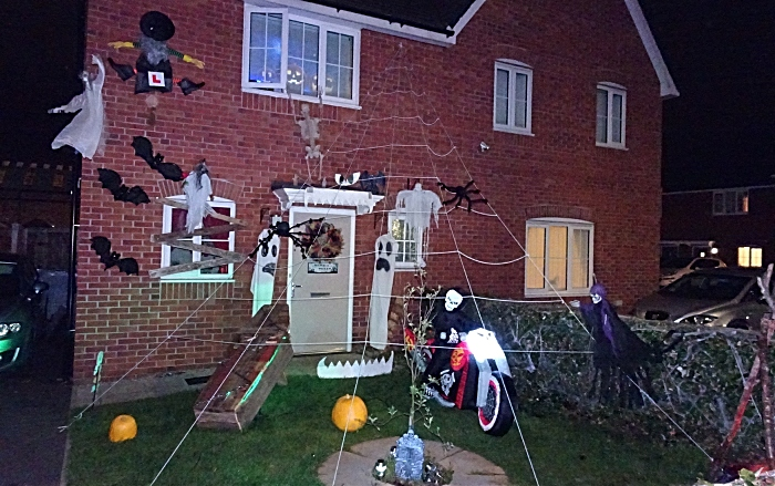 Barn Croft Road - giant spiders web (1)