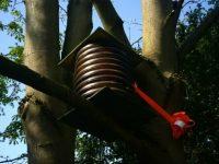 Queens Park in Crewe picks up prestigious national award