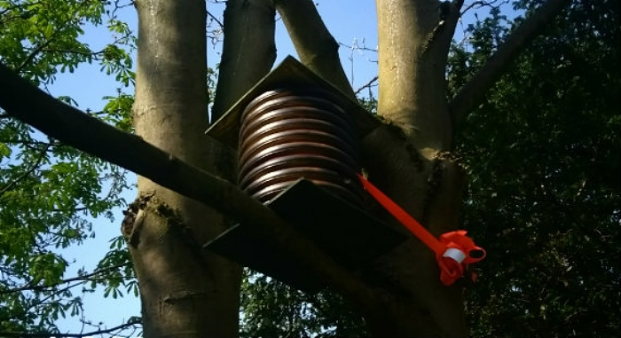 Bee hive in Queens Park Crewe (1)