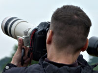 Cheshire Wildlife Trust seeks 2019 calendar photos