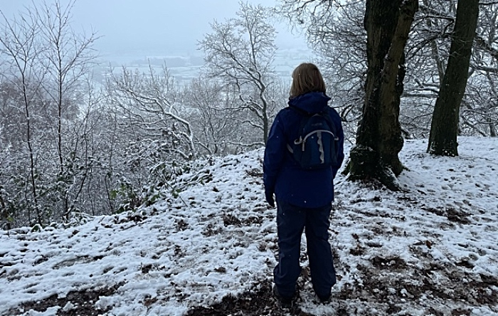 Bulkeley Hill in snow