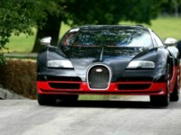 Cholmondeley Pageant of Power organisers launch contest