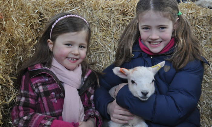 Charlotte, 5, and Katie, 8, Duckett from Audlem at lambing weekend 2016