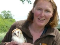 Barn owl boxes put to good use by Cheshire Wildlife Trust
