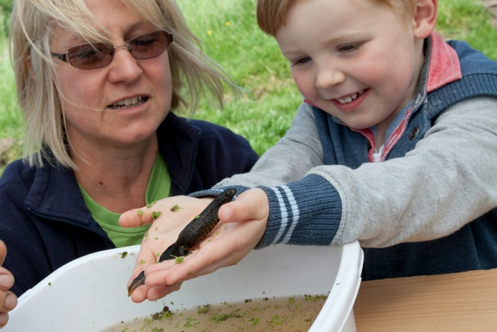 Cheshire Wildlife Trust open farm day