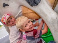 Nantwich Food Festival organisers to stage Family FunZone