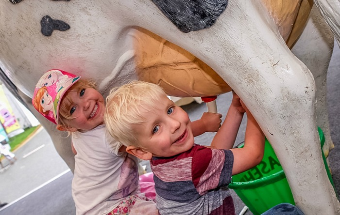 Children learn to milk at cow at Nantwich Food Festival - FunZone