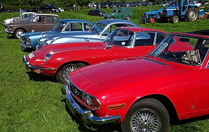 Classic cars on display (1)