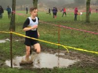 Crewe and Nantwich athletes in good form at Cheshire Cross Country final