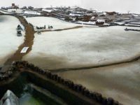 Battle of Nantwich Exhibition opens at Nantwich Museum