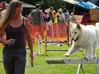 RSPCA Stapeley Grange summer fair proves a hit