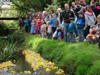 Annual duck race proves a big splash for Wistaston families