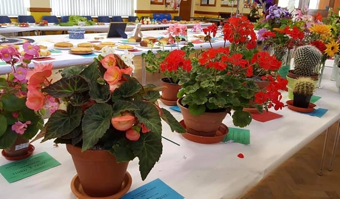 Flower and vegetables - selection of entries and winners