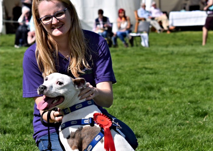 Fun Dog Show - best in show winner Staffordshire Bull Terrier Rocko with owner Annabel