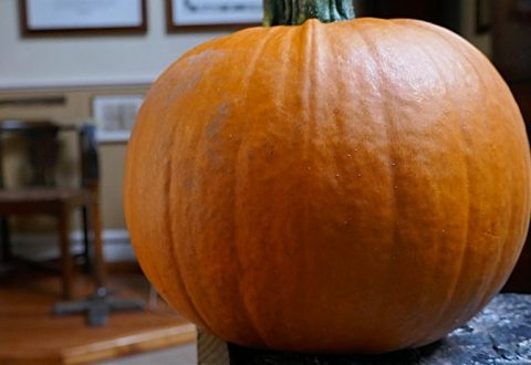 Ghost tours at Nantwich Museum among Halloween events