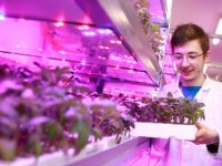 """Vertical Farming"" training centre unveiled at Reaseheath College in Nantwich"