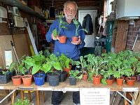 Wistaston Conservation Group plant sale raises funds