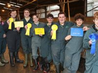 Nantwich pupils' pigs win top prizes at livestock show