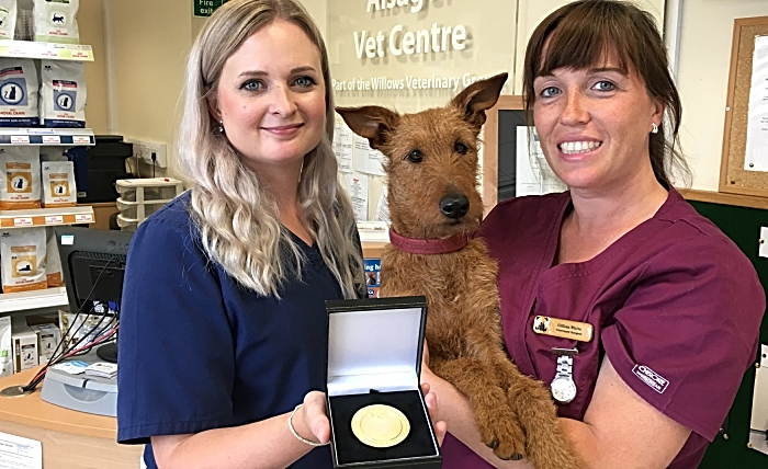 Katie Ford, Gillian White, Mavis the Irish terrier (1)